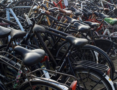 The Bike Industry's Climate Action Leadership Opportunity